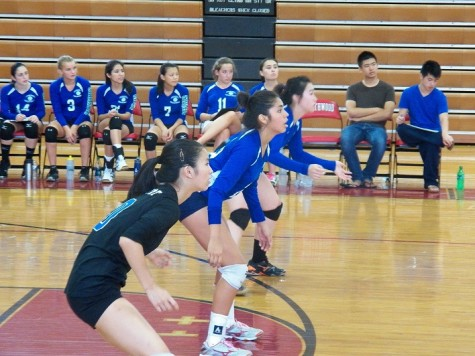 Undefeated volleyball faces rivals in coming weeks