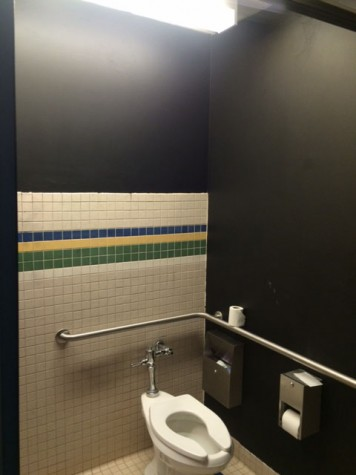 Bathroom walls painted black