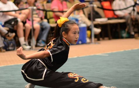 Wushu Warrior: Lee Competes in World Championships