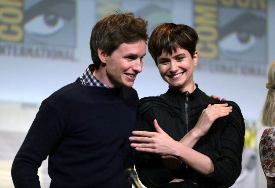 Eddie+Redmayne+%28Newt+Scamander%29+and+Katherine+Waterston+%28Tina+Goldstein%29+at+a+Comic-Con+press+conference.+