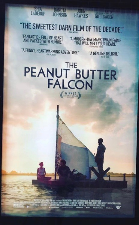 The Peanut Butter Falcon warms viewers' hearts