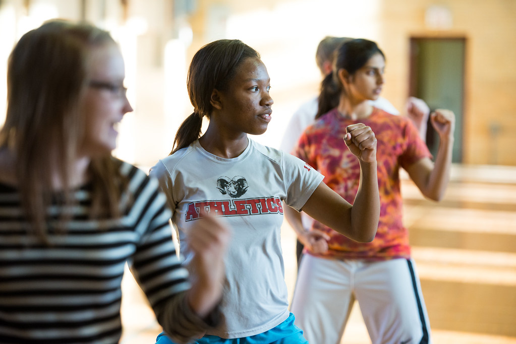The teaching of self-defense has been subject to much controversy by WCHS students. Self-defense, as useful and important as it is, is not frequently taught in high school P. E. classes.