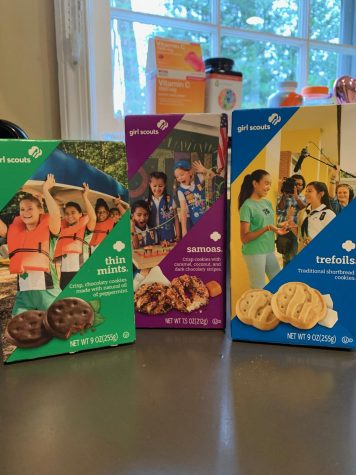 Girl Scout Cookies not only teach girls lessons on business, but taste great. The best Girl Scout Cookie was Samoas, though they were all good.