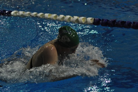 Swim and dive girls have strong showing at Metros