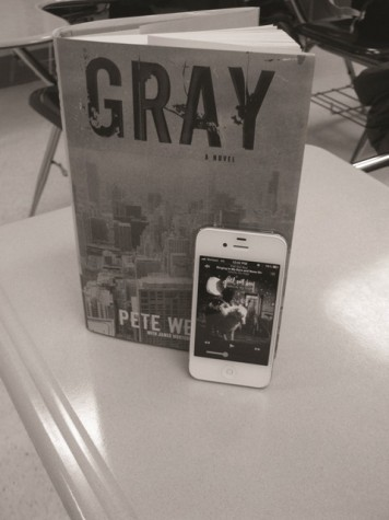 'Gray' offers glimpse into Pete Wentz's life