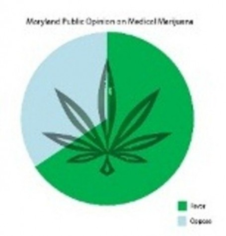 Public opinion sways legislation, marijuana bills pass
