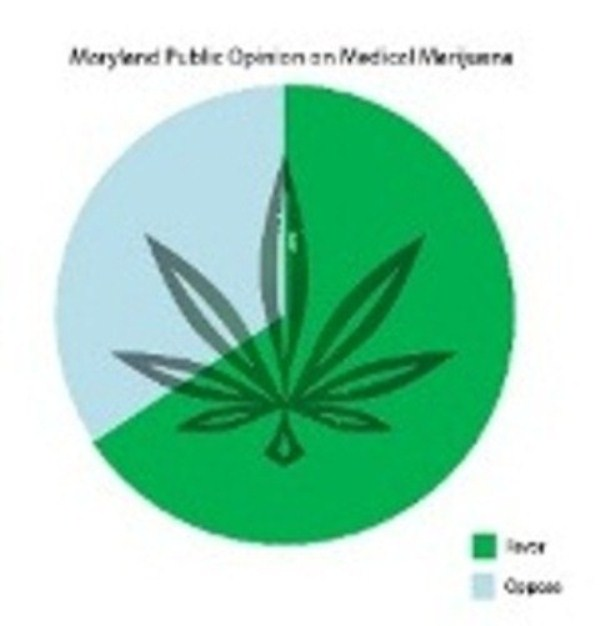 Public+opinion+sways+legislation%2C+marijuana+bills+pass