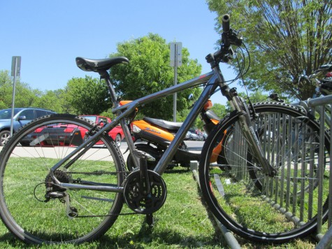 Local trails offer ample summer biking opportunities