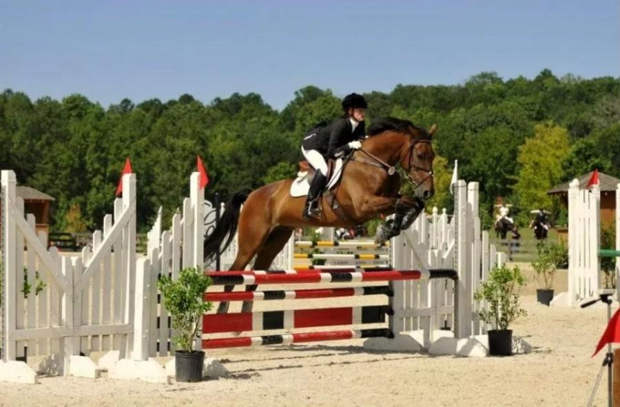 Senior+and+her+horse+succeed+by+leaps+and+bounds