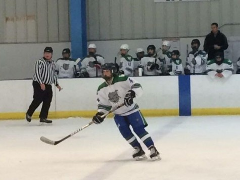 Female Hockey Players Contribute to CHS Teams