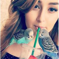 Carbonell hopes to get her birds registered as Emotional Support Animals in order to bring them to school on a more regular basis.