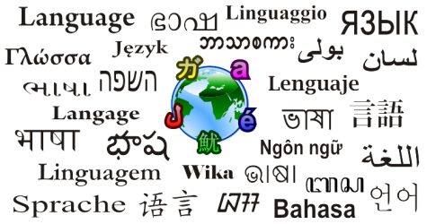 Students Should Take Foreign Language All Four Years