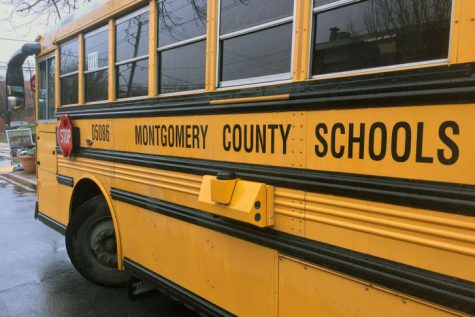 A MCPS school bus, used to drive elementary, middle and high school students, does not include seat belts, which is a possible safety hazard.