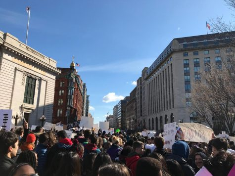 Large amounts of students line the streets in protest for gun control.