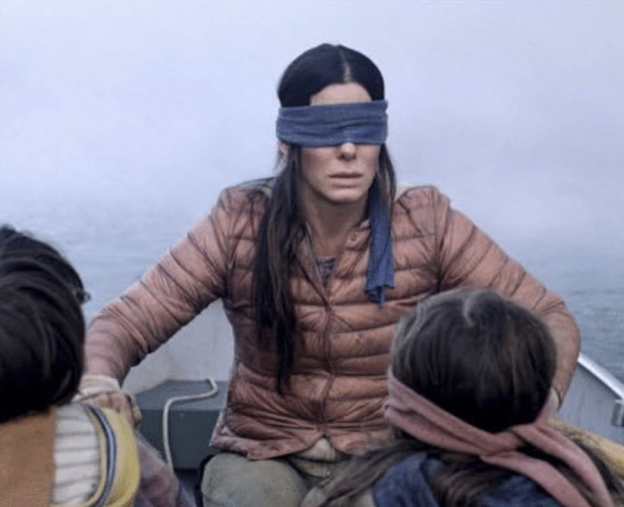 "After popular movies, like ""Bird Box"", come out, people go to social media to make memes highlighting specific scenes from the movie, turning them into sources of entertainment."