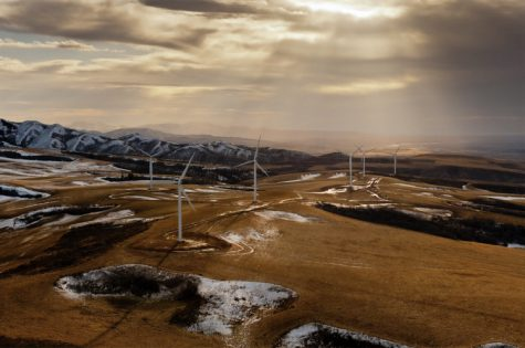 Wind farms like the one pictured are part of the future of clean energy. Soon, large corporations across the globe will use these to power stores, cell towers, and even homes.