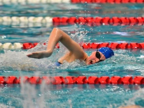 Senior Alison Kaiser started swimming on her summer pool
