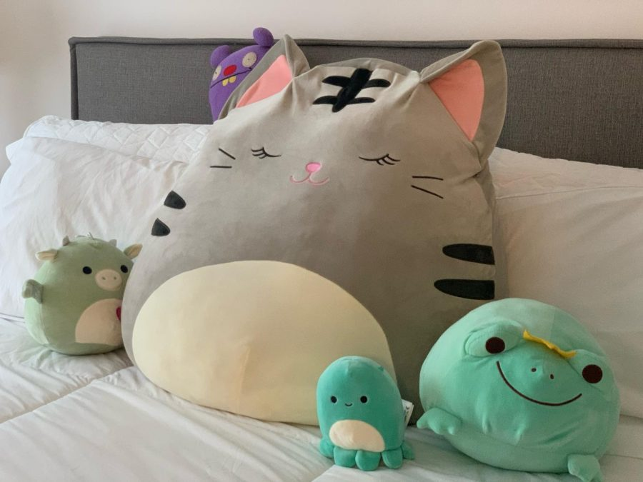 Padilla keeps all of her Squishmallows organized on her bed, with the large cat in the middle. Padilla loves to sleep on the cat, using it as an extra pillow to make her bed even more comfortable.